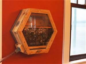 Comment Faire Une Ruche : avoir une ruche dans sa maison m me sans avoir de jardin ~ Melissatoandfro.com Idées de Décoration