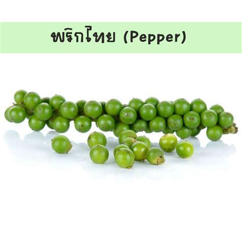 พันธุ์พืช: พริกไทย (ชื่อวิทยาศาสตร์: Piper nigrum Linn.)