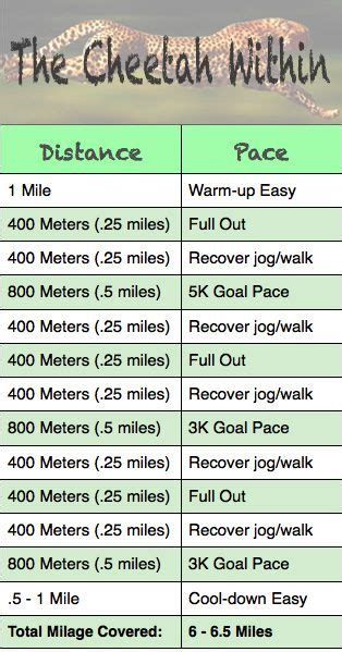 Best Workout Tracks Speed 800m And Workouts On