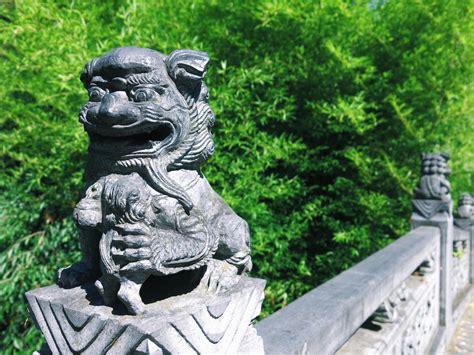 Chinesischer Garten Frankfurt by Chinesischer Garten Frankfurt Ivi Frankfurt Und