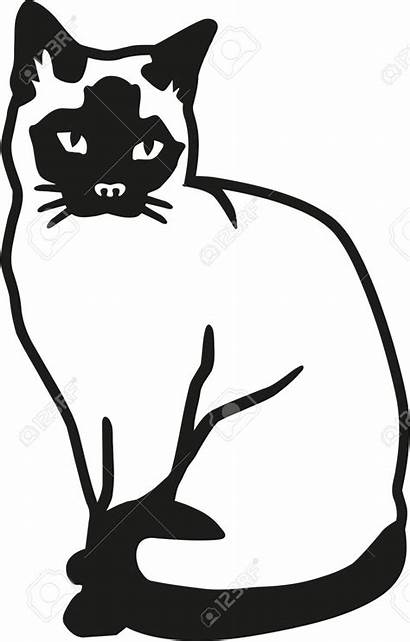 Siamese Cat Clipart Drawing Line Vector Drawings