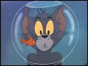 Tom And Jerry Fishbowl GIF - Find & Share on GIPHY