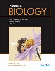 Redemption Code For Summer Principles Of Biology I