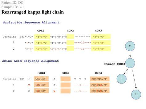high kappa light chain ppt antibiotic treatment resistant lyme arthritis trla