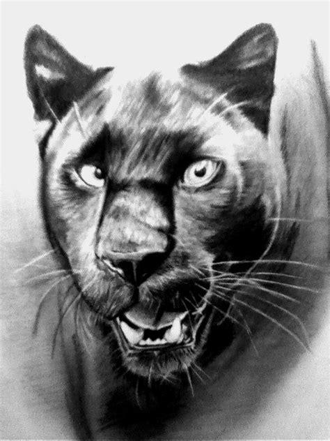 black panther drawing google sok bleistiftzeichnungen