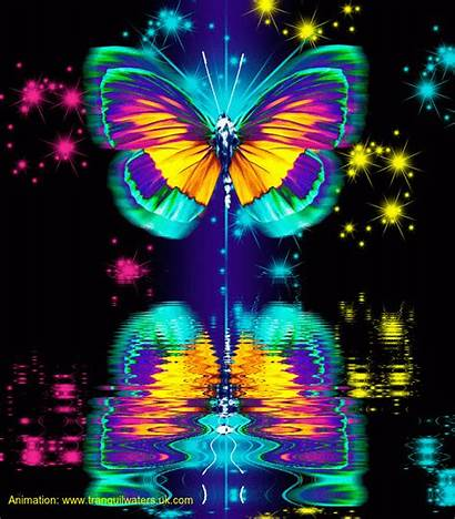 Butterflies Butterfly Animated Fantasy Colourful Water Mariposas