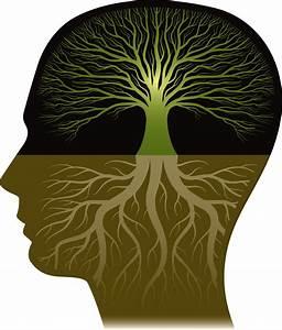 Knowledge – Broken Mirrors  Knowledge