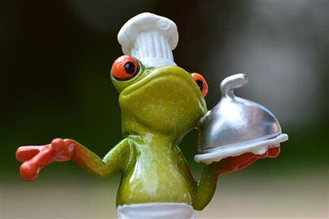 cuisine petit chef 10 spécialités culinaires vous ignorez l 39 amusante