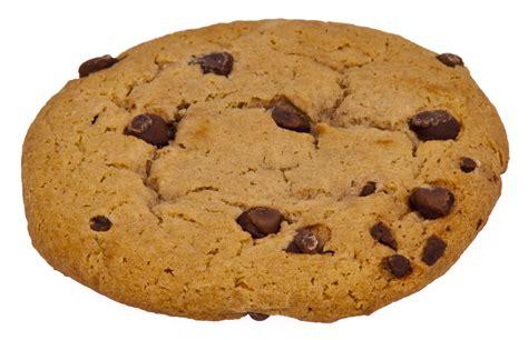 a cookie file choc chip cookie jpg