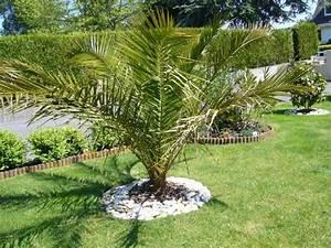 Les Jardins Du Sud : jardin du sud ~ Melissatoandfro.com Idées de Décoration