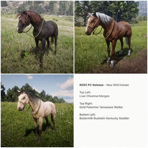 rdr2 horses wild pc release comments