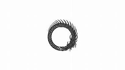 Ouroboros Minimalism Simple Wallpapers Desktop Dragon Circle