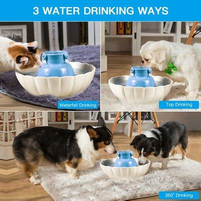 outdoor automatic dog water fountain  rated