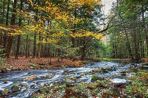 Sullivan County, New York - Wikipedia