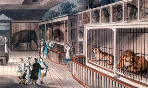 An Abridged History of London's Tower Menagerie