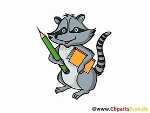 Nutzungsrechte Illustration Berechnen : waschb r clipart grafik illustration bild gratis ~ Themetempest.com Abrechnung