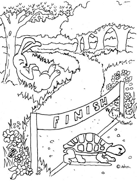 coloring pages  kids   adron tortoise