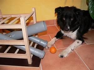 Hunde Intelligenzspielzeug Selber Machen : leckerchen und ballspender zum nachbauen partner hund magazin hunde spielzeug diy hunde und ~ A.2002-acura-tl-radio.info Haus und Dekorationen
