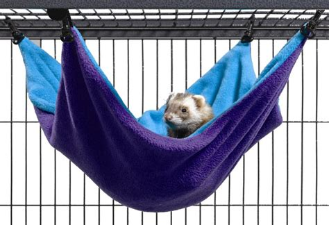 ferret beds and hammocks healthyferret ferret shelter and habitat requirements
