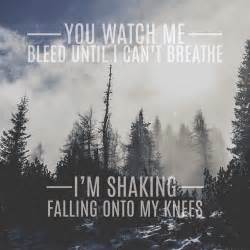 Shawn Mendes Stitches Lyric Quotes