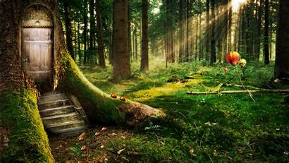Forest Enchanted Wallpapers 1366