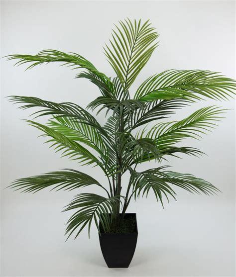 Palmen Für Innen by Best 20 K 252 Nstliche Palmen Ideas On K 252 Nstliche