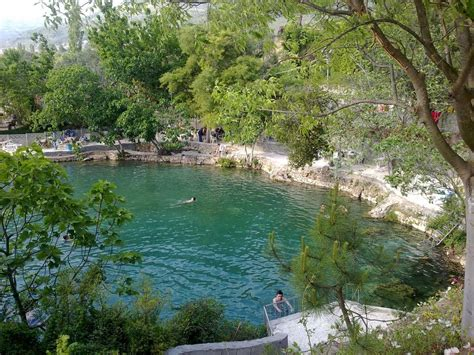 1000 Images About Natural Swimming Pools Ponds And Pools