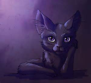 purple cat randome purple cat by bueshang on deviantart