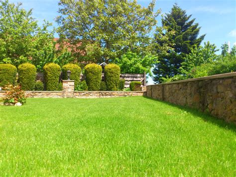 Backyard Grass by Free Images Grass Plant Meadow Home Walkway Summer