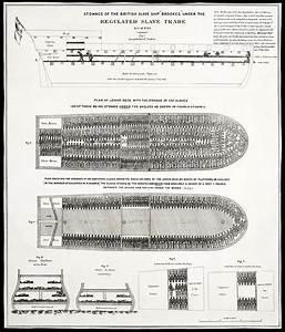 Slave Ship Middle Passage Stowage Diagram 1788 Photograph