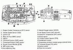 2001 Hyundai Elantra Engine Diagram