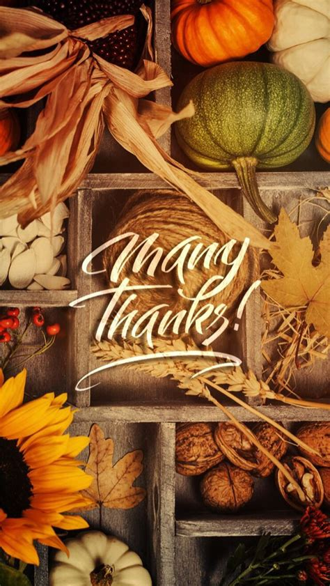 223 best thanksgiving wallpapers images on