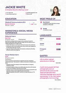 Creative Job Resume Examples Awesome Examples Resumes