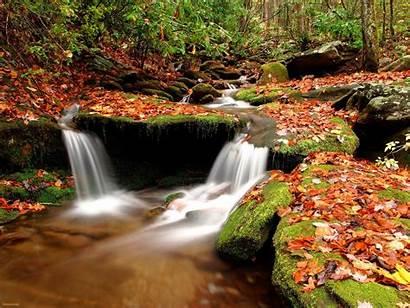 Wisconsin Autumn Wallpapersafari Bass Washington Lake Fall