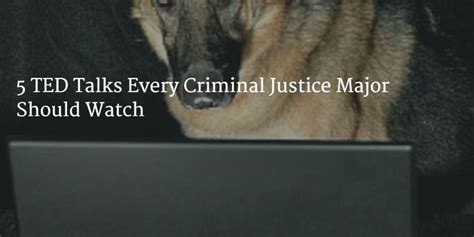 best 25 psicologia criminal ideas on pinterest