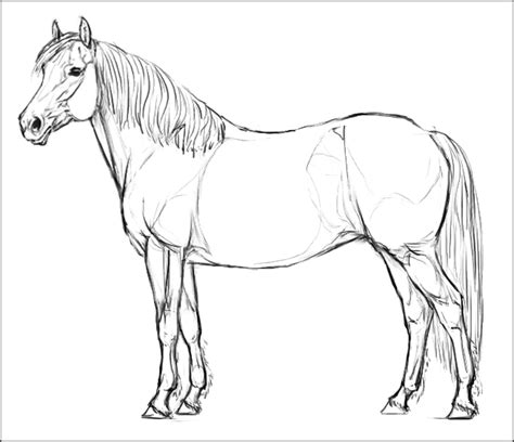 cavalcando das pferde browserspiel page