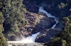 Citations and Resources - Zahamena National Park