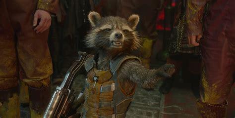 disney baby clothes rocket raccoon from guardians of the galaxy desktop wallpaper