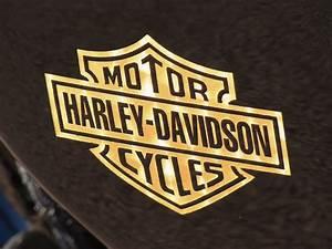 Racing Caf U00e8  Harley Xr 1200  U0026quot Xrcr U0026quot  By Ichikoku