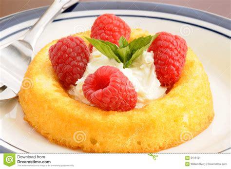 desserts with fresh raspberries fresh raspberry dessert stock image image 5448421