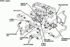 2012 Honda Accord Engine Diagram 26695 Archivolepe Es