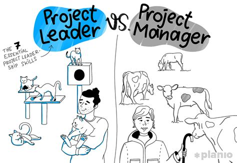 project leader  project manager   essential