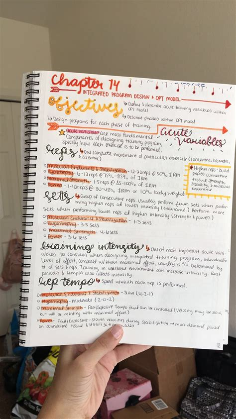 notes calligraphy notes design program