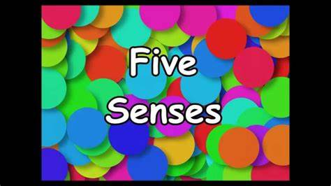 Music Tested In Kindergarten the five senses song