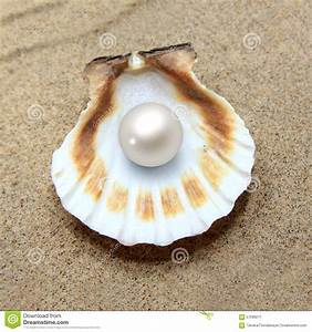 Sea Shell With Pearl Stock Photo - Image: 57098271
