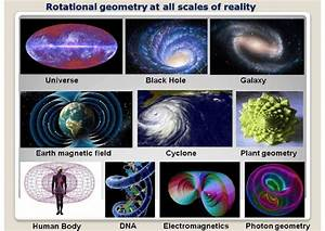 Toroidal Geometry Shows Identified Structures In The Whole