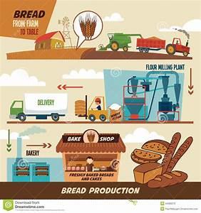 Diagram Of Farm  Diagram  Free Engine Image For User