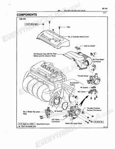 Idle Air Control Valve Wiring Diagram Harness