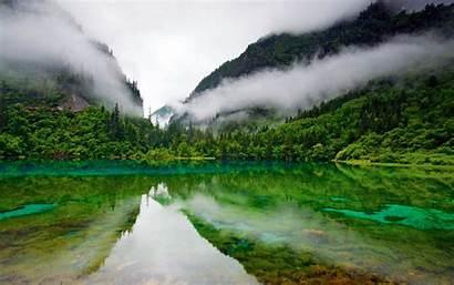 Lake Forest Foggy Reflection Desktop