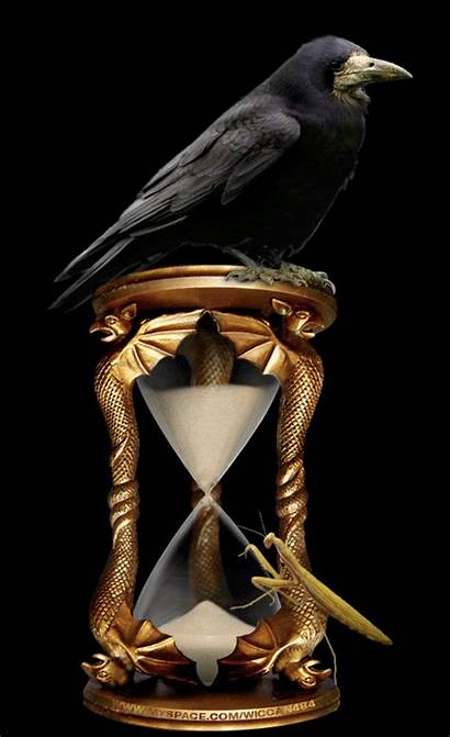 Hourglass Raven Ravens Crow Crows Wiccan Sand